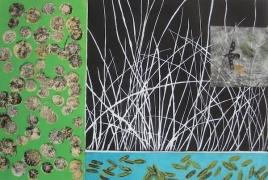"""Las 99 Semillas: el segregado, linocut, intaglio, chine collé, 12"""" x 18"""", 2012"""