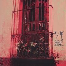 """No Violence: Las Casas de Suchito 8, silkscreen, 15"""" x 11"""", 2014"""