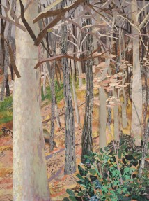 """Pennock Woods, print collage, oil on board, 48"""" x 36"""""""