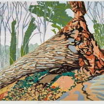 """Uprooted Tree at Turtle Rock, reduction woodcut, 14"""" x 18"""", 2019"""
