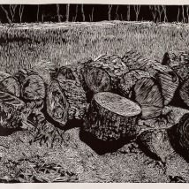 "Tree Removal, woodcut, 24"" x 60"", 2019"