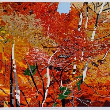 "Studio View Wonderland, reduction woodcut, 16"" x 20"", paper 22"" x 26"", 2020"